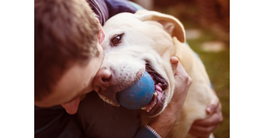 How To Keep Your Dog Happy And Healthy During Coronavirus Lockdown