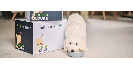 Win a Bella & Duke food box for your dog!