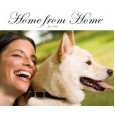 Home from Home Dog Boarding Agency