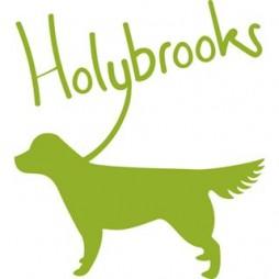 Holybrooks