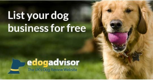 List Your Dog Business For Free On eDogAdvisor!