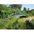 Merriments Garden and Nursery
