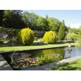 Picton Castle & Gardens