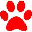 Redpaw Pet Supplies