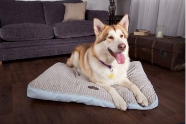 Scruffs Luxury Dog Beds