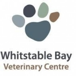 Whitstable Bay Vets