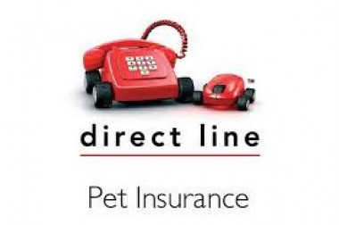 Review Of Directline Car Insurance