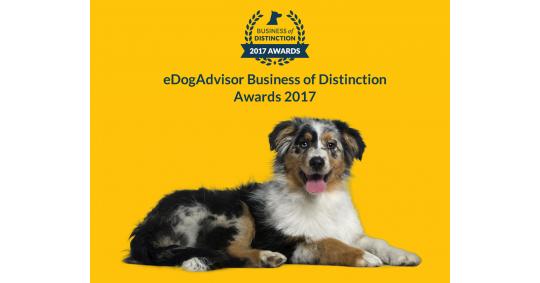 Business Of Distinction Awards 2017