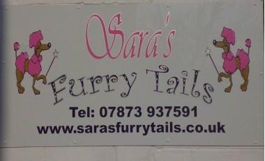 Sara's Furry Tails