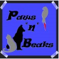 Paws 'n' Beaks