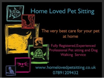 Home Loved Pets