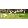 Doggy Daycare Cornwall