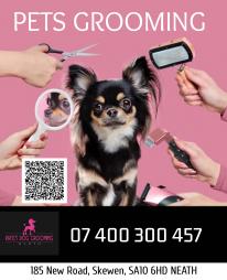 Kate's Dog Grooming Neath