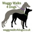 Waggy Walks 4 Dogs
