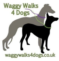 Waggy Walks 4 Dogs