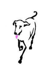 CaDeLac Dog Training and Behaviour