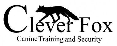 Clever Fox Canine Training and Security