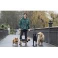 M22 Dog Walker