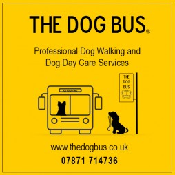 The Dog Bus