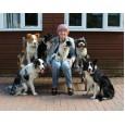 Staines Dog Training