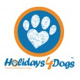 Holidays 4 Dogs