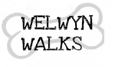 Welwyn Walks