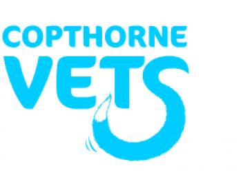Copthorne Vets